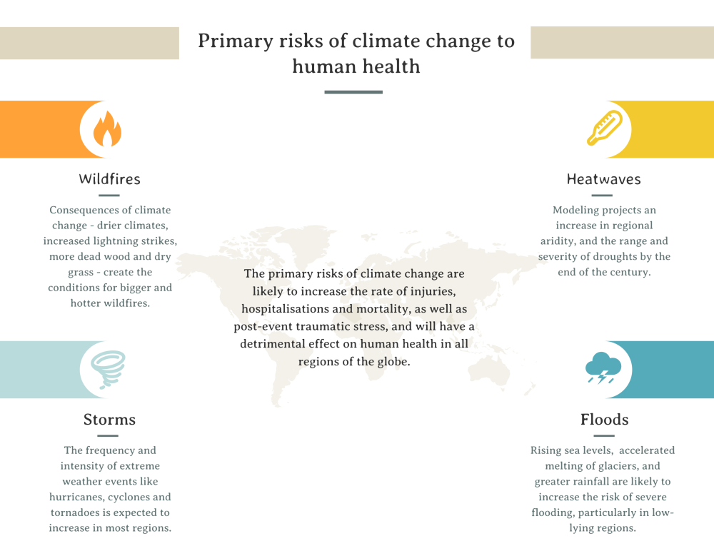 Primary Risks of Climate Change.png